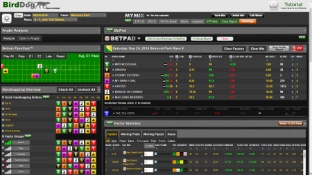 horse racing betting software free download